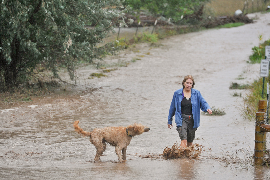 Description of . Margy Schone walks with her dog Paco down her driveway, Thursday, Sept. 12, 2013, near Niwot. Mountain View Fire Rescue firefighters advised her not to return to her home which is located close to Lefthand Creek.
