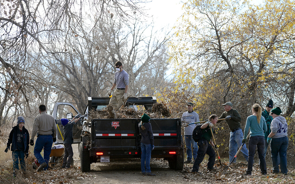 Description of . Volunteers clean up flood debris near Pelican Pond in St. Vrain State Park Saturday Nov. 16, 2013. (Lewis Geyer/Times-Call)