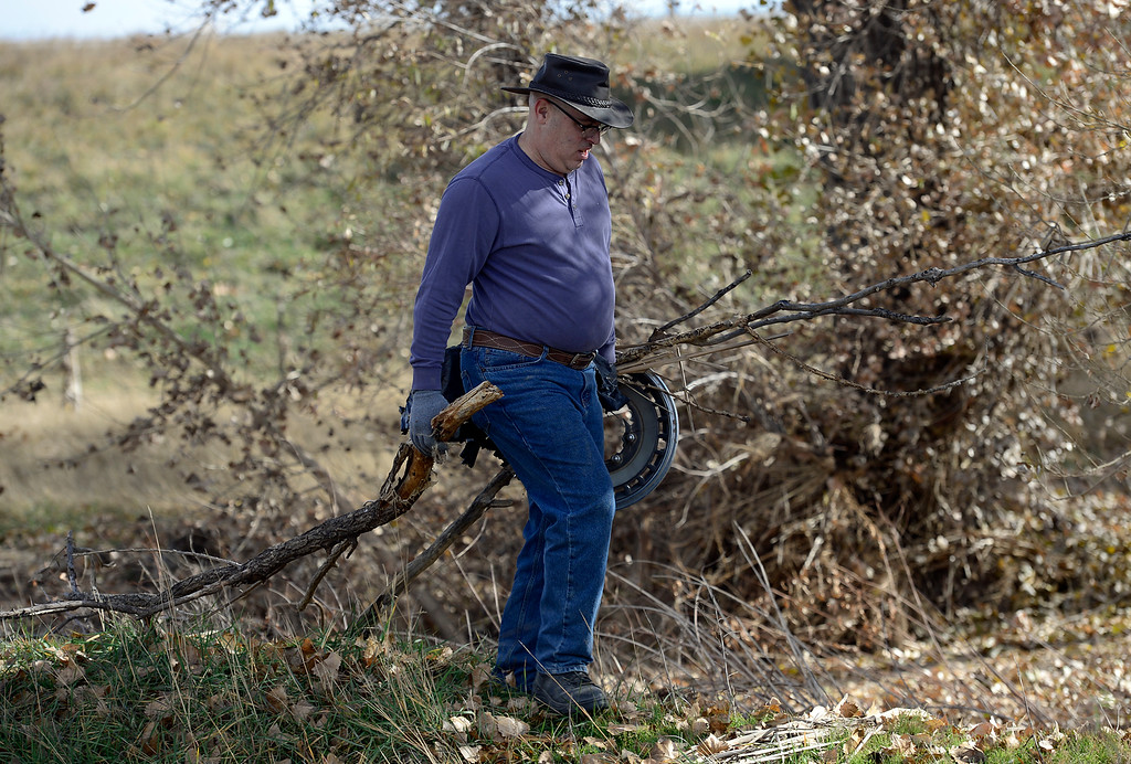 Description of . Todd Heirls, of Thorton, carries debris during a cleanup day at St. Vrain State Park Saturday Nov. 16, 2013. (Lewis Geyer/Times-Call)