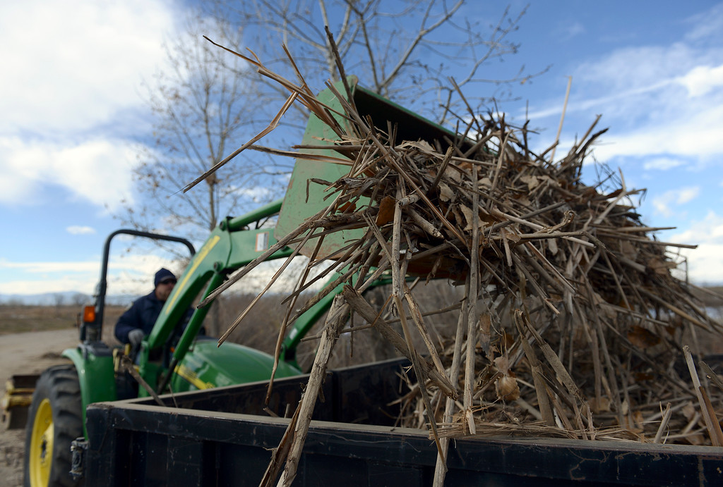 Description of . Flood debris is loaded into a trailer at St. Vrain State Park Saturday Nov. 16, 2013. (Lewis Geyer/Times-Call)