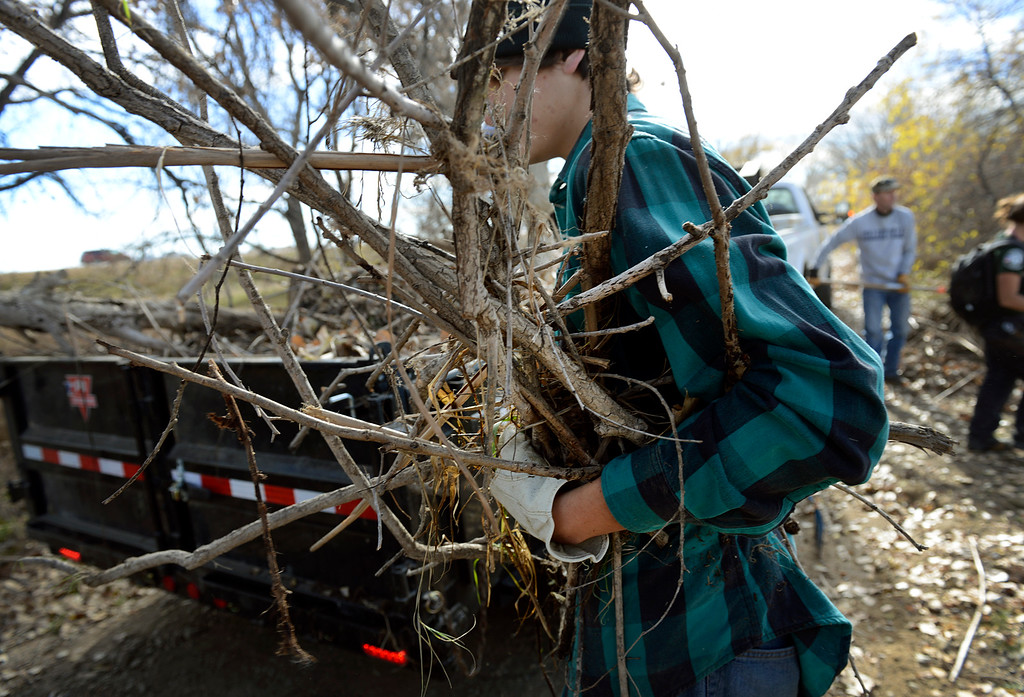 Description of . Volunteer Andrew Ver Steeg, of Berthoud, loads flood debris onto a trailer during a cleanup day at St. Vrain State Park Saturday Nov. 16, 2013. (Lewis Geyer/Times-Call)